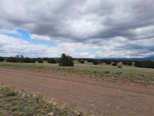 Surveyed, Great Access, Trees, Nice : Ash Fork : Yavapai County : Arizona