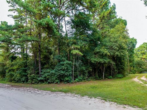 Wooded Corner Lot Near Preserve : Cleveland : Liberty County : Texas