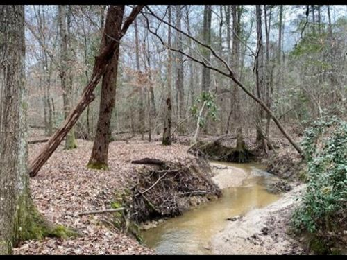 39.5 Acres In Simpson County In Men : Mendenhall : Simpson County : Mississippi