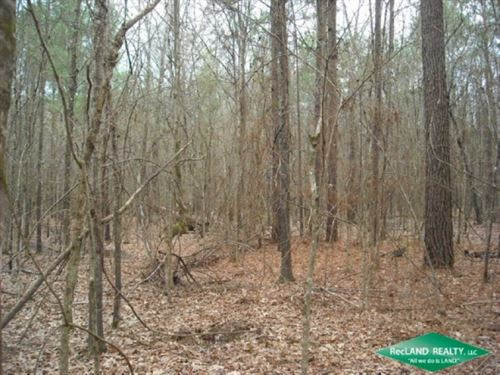 10 Ac, Timber & Hunting Near : Campti : Natchitoches Parish : Louisiana