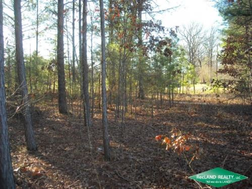 13 Ac, Wooded Home Site Tract : Plain Dealing : Bossier Parish : Louisiana