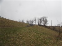 150.04 Acres With Hilltop View : McConnelsville : Morgan County : Ohio