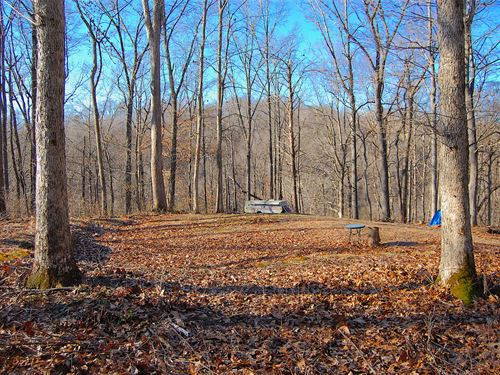 TR 217, 8 Acres : Scottown : Lawrence County : Ohio