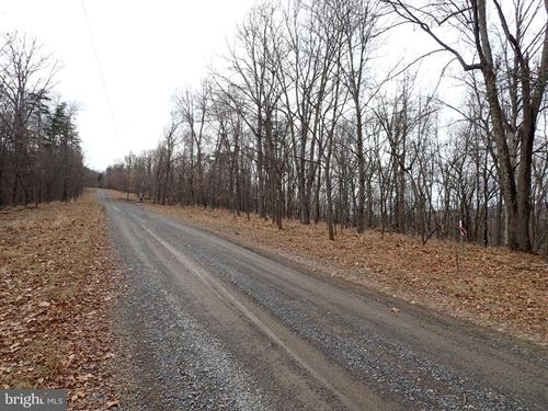 20 Acre Wooded Ridgetop View : Romney : Hampshire County : West Virginia