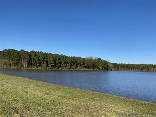 Beautiful Property With Water Views : Canton : Madison County : Mississippi