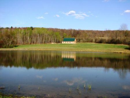 New Barn Or House 19 Ac Pond, Views : Greene School District : Chenango County : New York