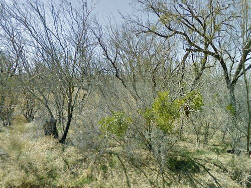 Large Residential Lot : Sweetwater : Nolan County : Texas