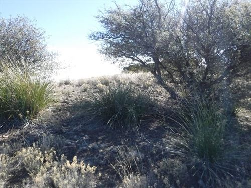 1.5 Ac Golf Course Property Silver : Silver City : Grant County : New Mexico