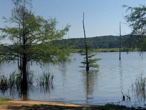 Land For Sale on Lake D'arbonne : Downsville : Union Parish : Louisiana