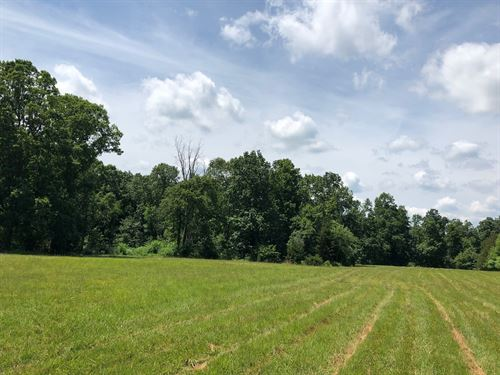 Land Acreage, Hohenwald, Tennessee : Hohenwald : Lewis County : Tennessee