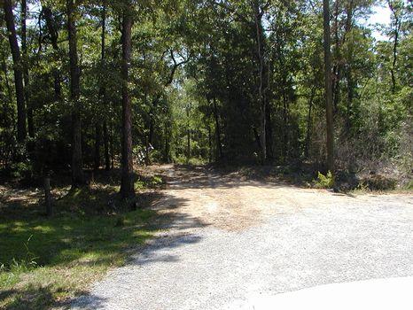 160 AC +/- River front property : Waynesboro : Wayne County : Mississippi