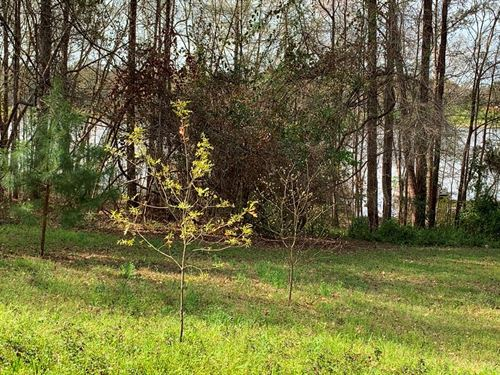 Waterfront Lot Highsaw Bay Lake : Frankston : Henderson County : Texas