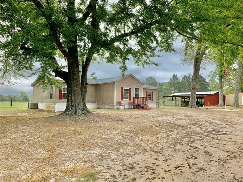 Mini Farm, Home & 4Ac, Horse Barn : Hartford : Geneva County : Alabama
