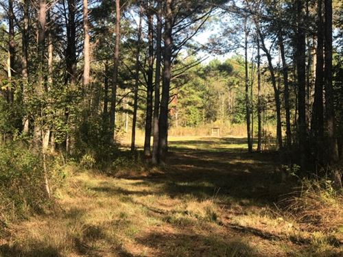132 Acres In Copiah County In Herma : Hermanville : Copiah County : Mississippi