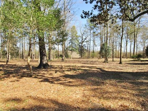 148 Acres Hunting Timberland For Sa : Brookhaven : Lincoln County : Mississippi