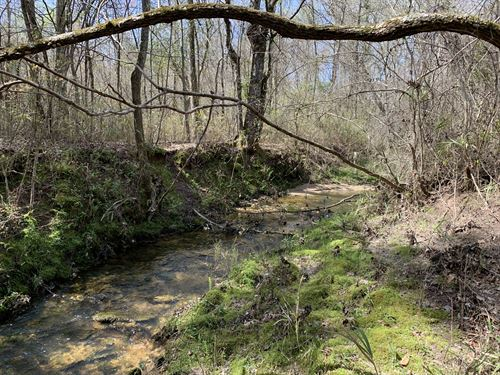 31.73 Wooded Acres With Stream : Rockmart : Paulding County : Georgia