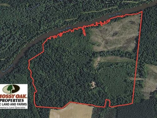 172 Acres of Hunting Land For Sale : Dover : Craven County : North Carolina