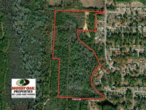 35 Acres of Hunting Land With Home : Laurinburg : Scotland County : North Carolina