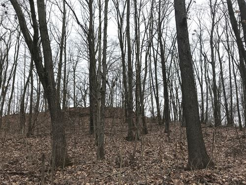 Louana Rd, 42 Acres : New Concord : Muskingum County : Ohio