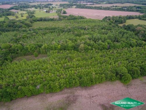 40 Ac, Hunting & Crp Income : Crowville : Franklin Parish : Louisiana