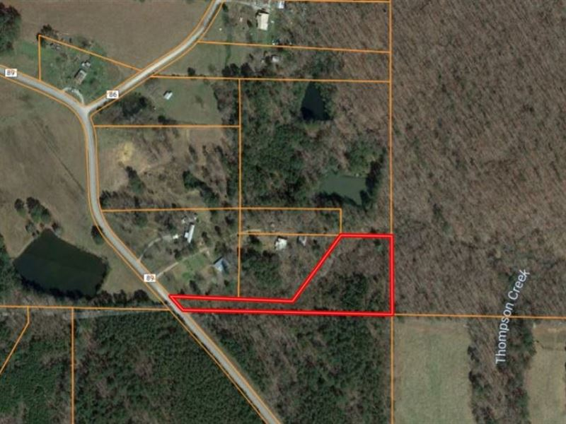 3.2 Acres In Bankhead Forest : Danville : Lawrence County : Alabama
