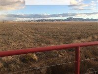 7.46 Acres Only $1Dn, $199/Mo : Belen : Valencia County : New Mexico