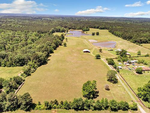 Texas Land for Sale : 10 - 50 Acres : LANDFLIP