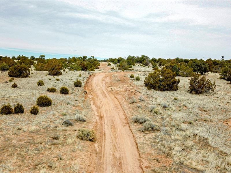 Lot, Road Frontage Near Blm Land : Ramah : Cibola County : New Mexico