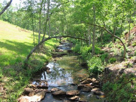 33+/- Acres on Metcalf Creek : Ashland : Clay County : Alabama