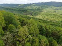 East Tennessee Mountain Property : Mooresburg : Hawkins County : Tennessee