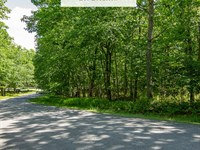 1.45 Acres Only $ 1Dn, 299/Mo : Milford : Pike County : Pennsylvania