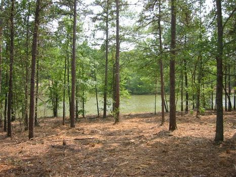 Water House Cove Lots on Weiss Lake : Gaylesville : Cherokee County : Alabama