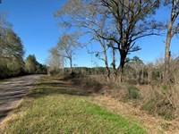 Beautiful 13, Ac Homesite : Elba : Coffee County : Alabama