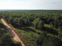 Wooded Homesite Near Enterprise : Enterprise : Coffee County : Alabama