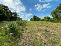 Raw Wooded Land Suitable Building : Wilson : Carter County : Oklahoma