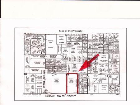 Reduced - 84 Acres : Alachua : Alachua County : Florida