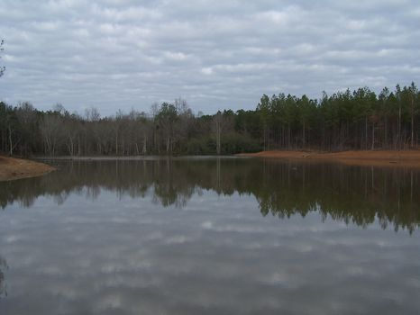 Hunting/recreational Tract Hwy 49 S : Americus : Sumter County : Georgia