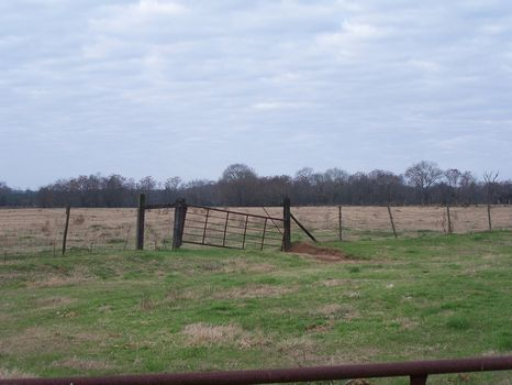 House and 30 Acres of Pasture : Plains : Sumter County : Georgia