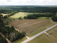 Five Acre Country Homesite : Ariton : Coffee County : Alabama