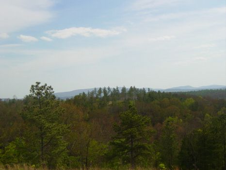 756 +/- Acres : Jasper : Pickens County : Georgia