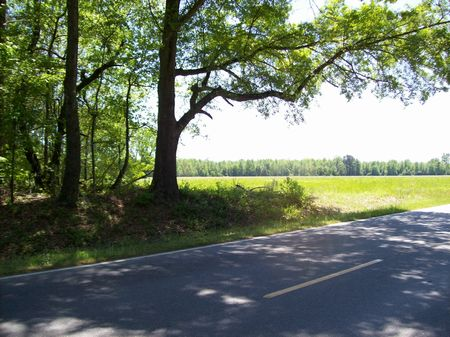 10 Acre Mini Farm Homesite : Tarheel : Bladen County : North Carolina