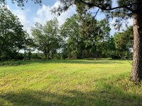 Homesite and Recreation Near Troy : Troy : Pike County : Alabama