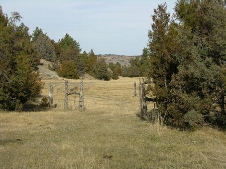 Bay Horse Creek Ranch : Biddle : Powder River County : Montana