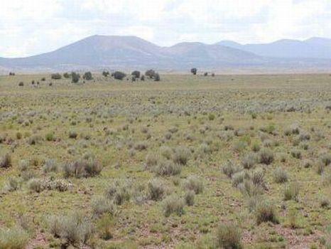 Concho Lakeland, AZ : Concho : Apache County : Arizona