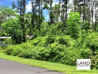 Gorgeous Lot in Prime Location : Pahoa : Hawaii County : Hawaii