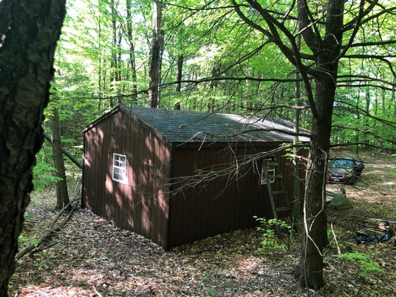 Camp Balsam : Land for Sale in Diana, Lewis County, New ...