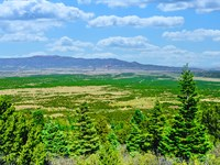 Wooded Mountain Acres Near Blm Land : Walsenburg : Huerfano County : Colorado