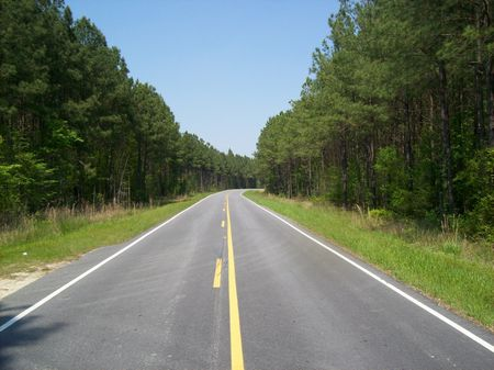 Timberland Investment Tract : Linden : Cumberland County : North Carolina