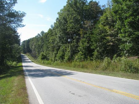 246ac Near U. S. Forest Service : Carlisle : Union County : South Carolina
