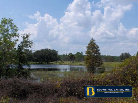 2+ Acres Tiger Creek Groves $34,990 : Babson Park : Polk County : Florida